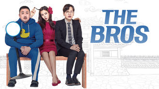 Netflix Box Art for Bros, The